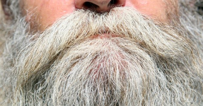 Giornata Mondiale Della Barba