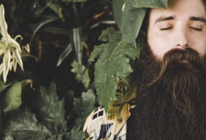 Qual è Il Miglior Olio Per Far Crescere La Barba?
